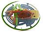 Лабиринтус-огромный (диаметр 22 см, 168 шагов)