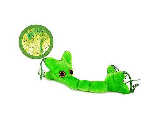 Купить мягкую игрушку нервная клетка