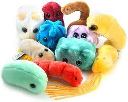 Плюшевые микробы